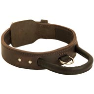 Extra Durable Leather Amstaff Collar with Handle for Attack Training