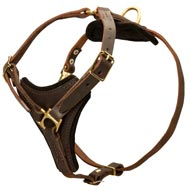 Tracking Leather Amstaff Harness With Y-Chest Plate