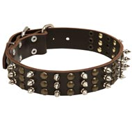 Amstaff Spikes and Studs Rows Leather Dog Collar
