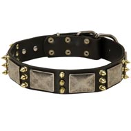 Amstaff Spiked Leather Collar with Nickel Plates