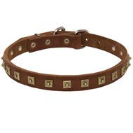 Handcrafted 1 Row Square Studded Leather Amstaff Collar