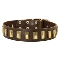 Amstaff Leather Collar with Shiny Plates