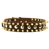 Spiked and Studded Amstaff Leather Collar