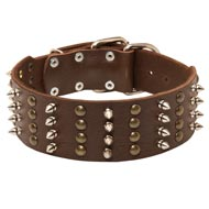 Extra Wide Leather Spiked and Studded Amstaff Collar