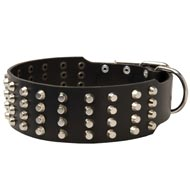 Extra Wide 4 Rows Studded Leather Amstaff Collar