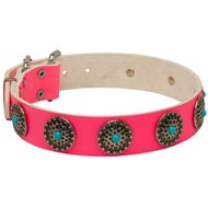 Pink Leather Amstaff Collar with Circles for Dog Walking