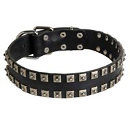 "New Leather Amstaff Collar - Fashion Exclusive Design - ""Caterpillar"""
