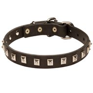 Amstaff Leather Collar Caterpillar Design
