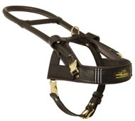 Guide and Assistance Leather Amstaff Harness