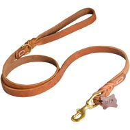 Walking and Training Leather Amstaff Leash with Comfy Handle