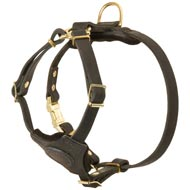 Spruce Leather Amstaff Harness With Small Chest Plate