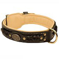 Amstaff Leather Collar Braided