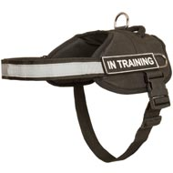 Nylon Amstaff Harness with Reflective Strap for Training, Walking, Police Service, SAR and More