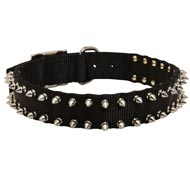 Amstaff Nylon Collar Spiked