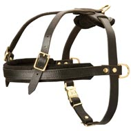 Leather Amstaff Harness for Tracking and Pulling