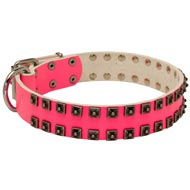 Fashionable Pink Leather Amstaff Collar with Studs for Walking She-Dogs