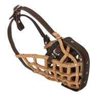 Basket-Like Amstaff Muzzle Leather