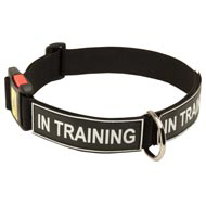 All Weather Nylon Amstaff Collar with ID Patches