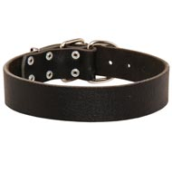 Wide Leather Amstaff Collar for Training and Walking