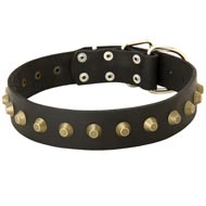 Leather Amstaff Collar with Brass Pyramids