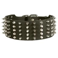 Amstaff Leather Collar Spiked and Studded