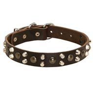 Leather Amstaff Collar With Studs and Pyramids