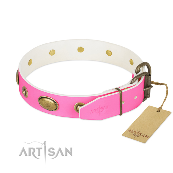 Corrosion resistant embellishments on full grain leather dog collar for your pet