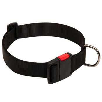 Nylon Amstaff Collar for Training and Waling