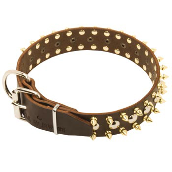 Leather Amstaff Collar with Rust-proof Decoration