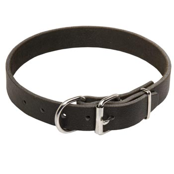 Dog Leather Collar for Amstaff Training and Walking