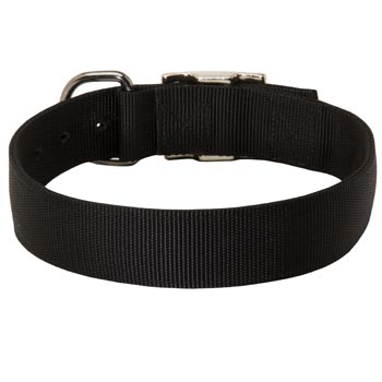 Nylon Collar for Amstaff Comfy Training