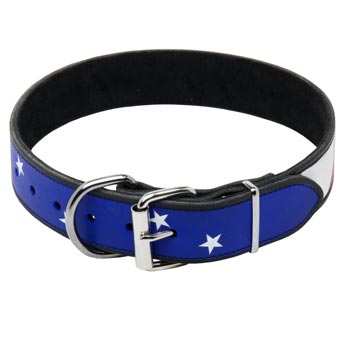 Amstaff Leather Collar With American  Flag Painting