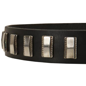 Stylish Leather Collar with Vintage Plates for Amstaff