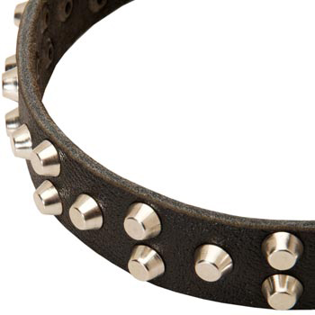 Leather Amstaff Collar Durable Stud Decorated