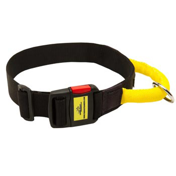 Nylon Amstaff Collar with Quick Release Buckle