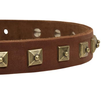 Amstaff Leather Collar With Square