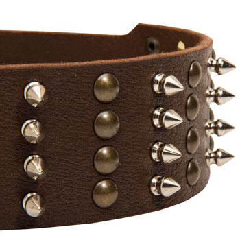 Amstaff Leather Collar with Rust-proof Fittings