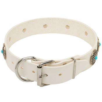 Leather   Amstaff Collar White Fancy for Dog Training, Walking