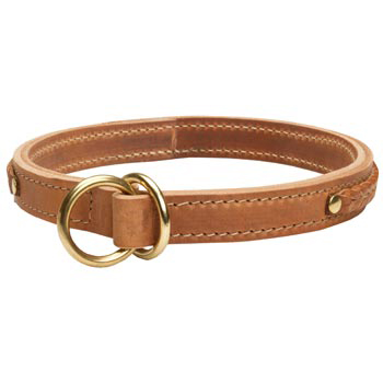 2 Ply Leather Choke Collar for Amstaff