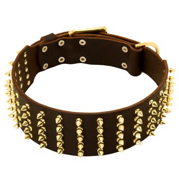 Fashionable Spiked Leather Amstaff Collar