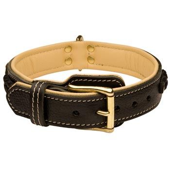 Amstaff Decorated  Leather Dog Collar