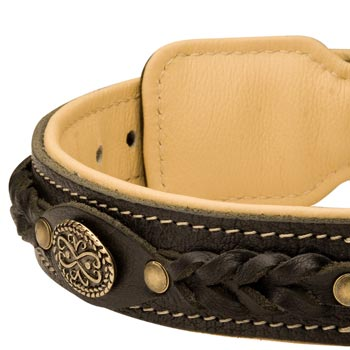 Leather Walking Fashion Collar for Amstaff