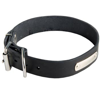 Leather Amstaff Collar for Identification