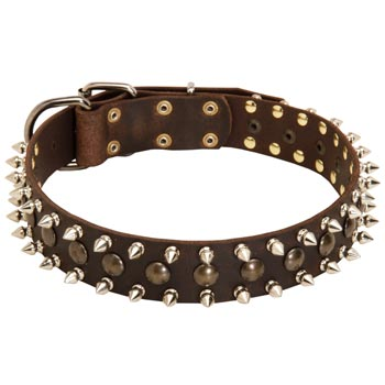 Amstaff Leather Collar with Stylish Decoration
