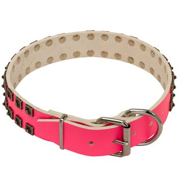 Amstaff Pink Leather Collar for Walking She-Dogs