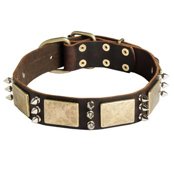 War-Style Leather Dog Collar for Amstaff
