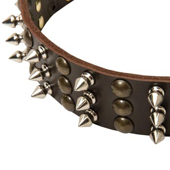 3 Rows of Spikes and Studs Decorative Amstaff  Leather Collar