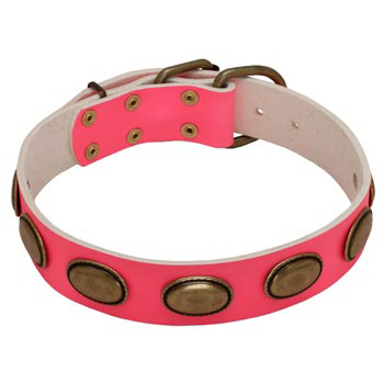 Pink Leather Amstaff Collar for Female Dogs