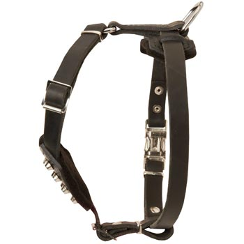 Leather Amstaff Puppy Harness for Comfy Walking