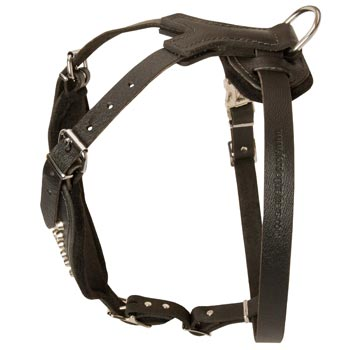 Custom Made Leather Amstaff Harness
